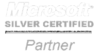 MS Silver Partner