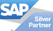 SAP Business One Consultation
